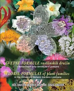 floral formulas of plant families in the university botanic gardens