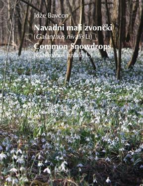 common snowdrops, galanthus  nivalis, book